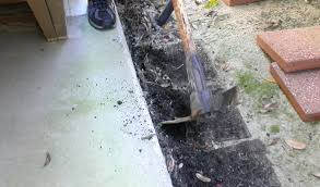 See This Report on Murrays Termite & Pest Control Adelaide